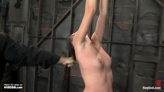 nagy cinege hentai pornó