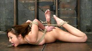 Brutaler Bondage Porn